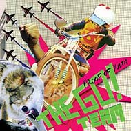 "The Go Team ""Proof Of Youth"" (2007) / electro, funky, hip-hop, rock, acid"