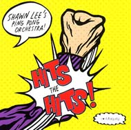 "Shawn Lee's Ping Pong Orchestra ""Hits the hits"" (2007) / funky, broken-beat, remixes"
