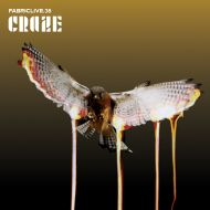 Fabriclive 38 mix by DJ Craze / breaks, hip hop