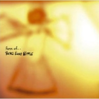"Berg Sans Nipple ""Form of..."" / post-rock, IDM, future jazz, indie rock..."