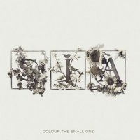 """Sia """"Colour The Small One"""" (2004) / trip-hop, downtempo, electronic"""