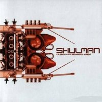 Shulman - In Search of a Meaningful Moment Psychedelic Музыка trance, house