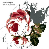 "Morphologue ""Flower Art Pictures"" (2007) / broken beat, d'n'b, trip-hop"