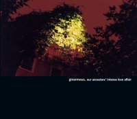 Ginormous - The Endless Procession (2006) [2CD] [Limited Edition] / IDM, industrial noise, broken beat