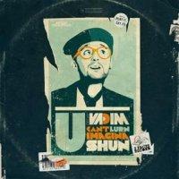 "DJ Vadim ""U Can't Lurn Imaginashun""  (2009) / hip-hop, funky, modern soul"