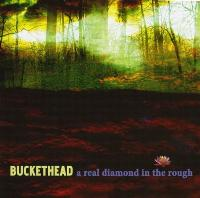 Buckethead - A Real Diamond In The Rough (2009) / instrumental progressive metal, rock