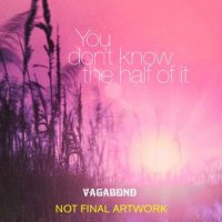 Vagabond - You Don't Know The Half Of It (2009)/Blues Rock/Soul/Pop Rock/Britpop