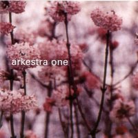 Arkestra One - Skydiving (2002) / nu-jazz, lounge
