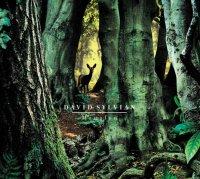 David Sylvian - Manafon (2009) / Avant-garde / Ambient / IDM/ Experimental