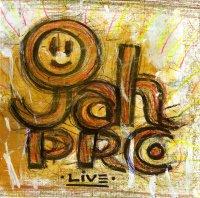 Джа Пре (Jah Pre) - Live (2009) / reggae
