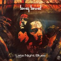 "Big Bud  ""Late Night Blues"" 2 CD (2000) / Atmospheric Drum'n'Bass, House, Downtempo"