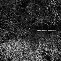 "Ahnst Anders ""Many Ways"" (2009) IDM, Ambient, Experimental"