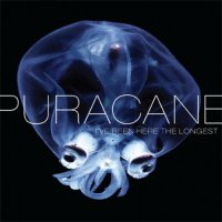 Puracane - I've Been Here The Longest (2009) / Chillout, Trip-Hop