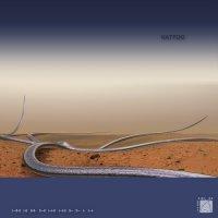 Kattoo - l--ll-ll l-ll ll-ll- l-ll- l--l-ll l--l-ll ll-- ll-- l- l--l- (2010) electronic, IDM, ambient, experimental, modern classical, breakbeat