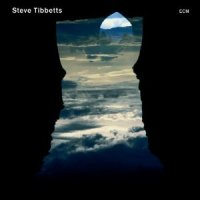 "Steve Tibbetts ""Natural Causes"" (2010) / ethno-jazz, world music, ECM"