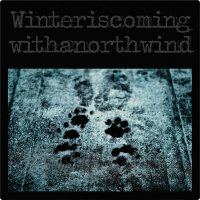 [VA] winteriscomingwithanorthwind (2010) - compiled by krezh / modern classical, acoustic, ambient