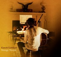 Gareth Liddiard – Strange Tourist (2010) / acoustic, alternative folk