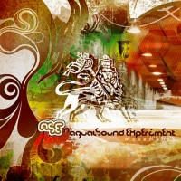 Nagual Sound Experiment - Invisible Movements (2007) /  Breaks, Dub, Dubstep, Experimental, Psybient, Ethnic