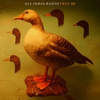 All India Radio - Free Me (2011) / ambient, downtempo