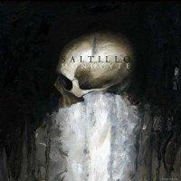 Saltillo - Monocyte (2012) / Trip-Hop, Modern Classical, IDM, Experimental, Electronic