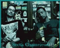"Secta Chameleon ""The Best"" / downtempo, future jazz, breakbeat, house, electro"