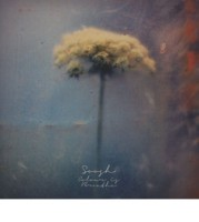 Soosh – Colour Is Breathe (2013)/ downtempo, experimental