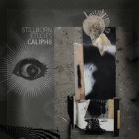 Caliph8 - Stillborn Etudes -2013/ electronic, instrumental hip-hop, psychedelic future jazz