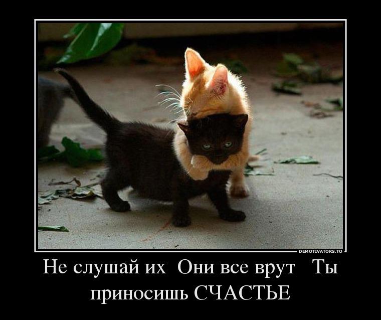 http://www.xorosho.com/uploads/posts/2013-05/1369839352_105294_ne-slushaj-ih-oni-vse-vrut-tyi-prinosish-schaste_demotivators_ru.jpg