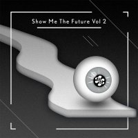 Friends of Friends Music - Show Me the Future Vol. 2 (2013) / elctronic, compilation