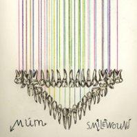 """múm """"Smilewound"""" (2013) / folktronica, indie, icelandic"""