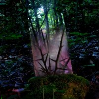 Jensen Sportag - Stealth of Days LP (2013) / electronic, experimental, pop, soul, easy listening