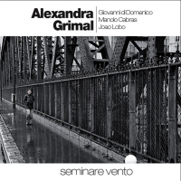Alexandra Grimal, Giovanni Di Domenico, João Lobo, Manolo Cabras - Seminare Vento (2010) // modern jazz, experimental, идет охота на лосей
