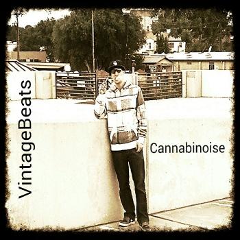 Vintage Beats - Cannabinoise (2014)