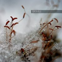 Various Artists - ENFOLD 01 (2014) / ambient, idm, downtempo, electronic
