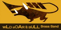 Wild Boar and Bull Brass Band (hip-hop brass)