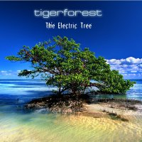 Tigerforest - Collection (2006-2014) / Chillout, Ambient, New Age, Trance