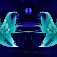 Mr. Moods - In the beginning (2015) / electronic, jazz, trip-hop, beats, downtempo