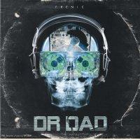 Frenic - Dr.DAD (2013) / funky hop, downbeat, instrumental, trip-hop