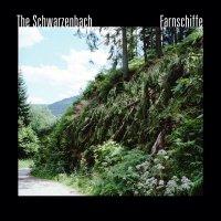The Schwarzenbach - Farnschiffe (2012) и Nicht Sterben. Aufpassen (2015) / avant pop, spoken word