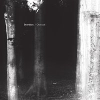Brambles - Charcoal (2012) / ambient, modern classical