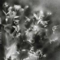 Jасаszеk - Кwiaty (2017) / онотебеуженепоможет, ambient, experimental, modern classical