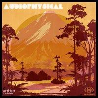 Audiophysical - Ar·ti·fact (2017) / Downbeat, Acid Jazz, Dub, Breaks, Funky, Nu Jazz, Groove, New Zeland - Canada