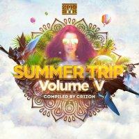 VA - Summer Trip vol. V (2017) / psy-trance, psy-prog, goa, Italy
