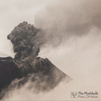 The Flashbulb - Piety of Ashes (2017) / downtempo, electronic, neoclassical, idm, glitch, bass, instrumental, ambient