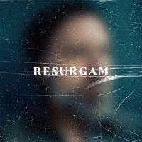 Fink - Resurgam (2017) / singer-songwriter, indie folk