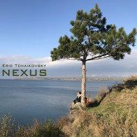 Eric Tchaikovsky - Nexus (November, 2017) / acid folk, soul, jazz, funk, techno, ambient