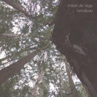 Tristan de Liege - Tamalpais (2016) / contemporary jazz, downtempo, broken beat, abstract, US