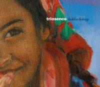 Triosence - Hidden Beauty (2017) /Contemporary Jazz