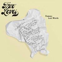 The True Loves - Famous Last Words (2017) / groove, funk, breaks, brass, jazz-funk, US