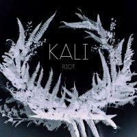 Kali - Riot (2018) / post jazz, chamber jazz, chamber prog, minimalism, Switzerland